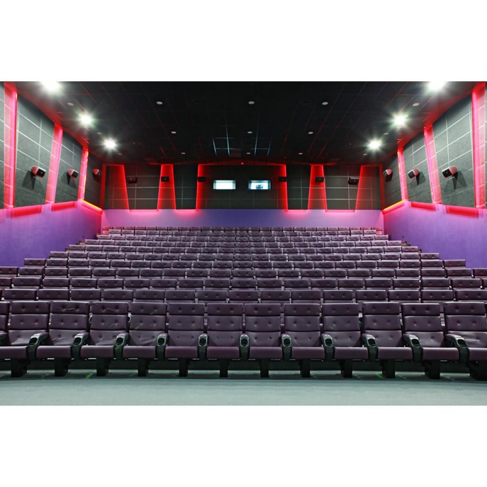 Кинотеатр «Формула Кино»